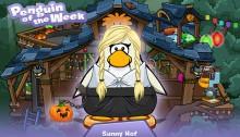 SunnyHof-1415882033