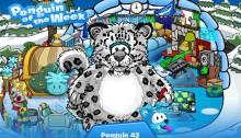 Penguin43POTW-1429780835